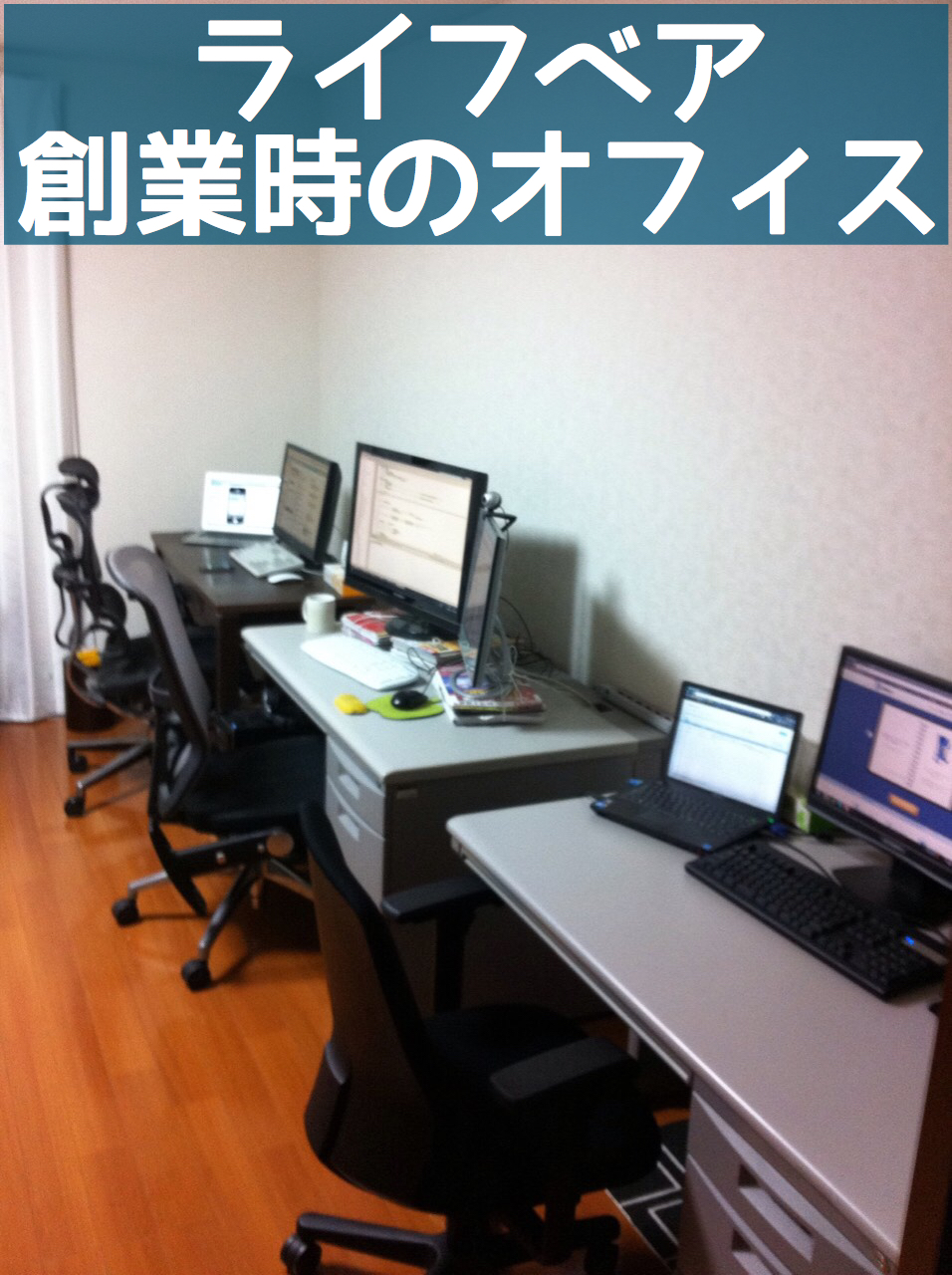 lifebear_office