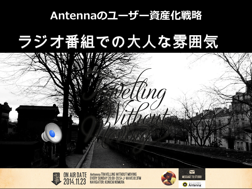antenna_metaps06